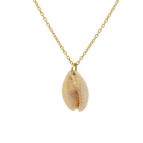 collar de oro con concha del mar natural